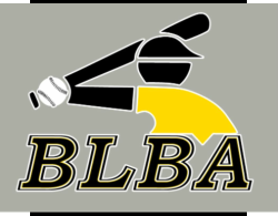 Big League Baseball Academy